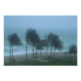 Miami Beach, Florida, chicotada dos ventos de fura Poster