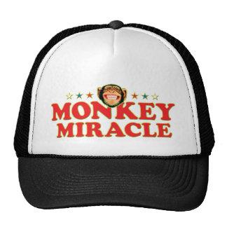 Milagre Funky do macaco Bonés