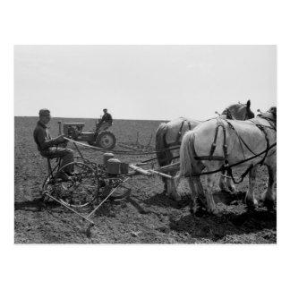 Milho puxado a cavalo Plantador, 1940 Cartão Postal