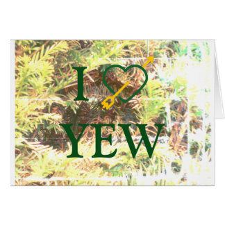 Mim cartões do YEW do *Heart*