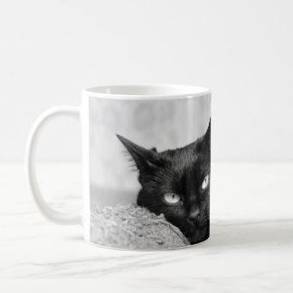 Minha caneca da foto do gato preto