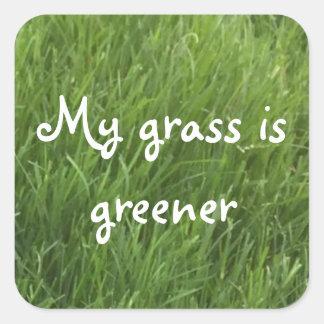 Minha grama é etiquetas verdes