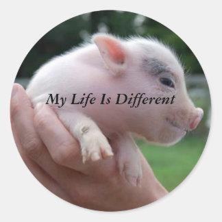 Minha vida é diferente adesivo