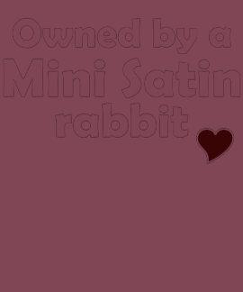 Mini camisa do coelho do cetim t-shirt