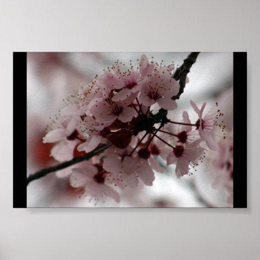 mini flores impressão