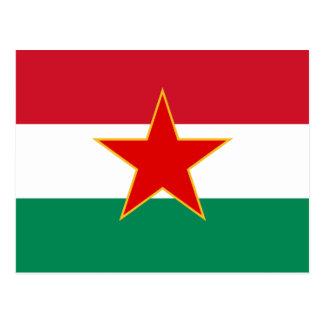 Minoria húngara jugoslava de Sfr, bandeira étnica Cartões Postais