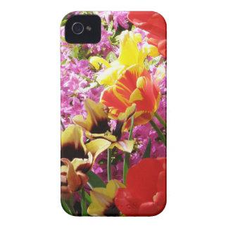 Mistura de flores capinhas iPhone 4
