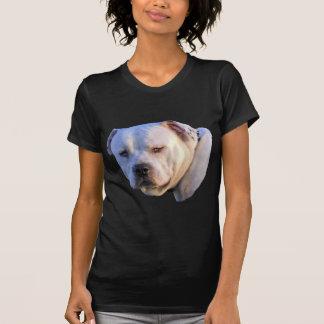Mistura de Pitbull T-shirt