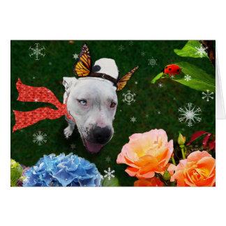 Mitzy o Mariposa, cartão de cartões de natal
