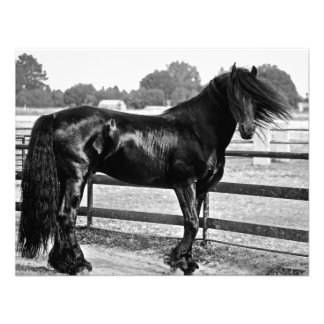 Modelagem do cavalo convite personalizado