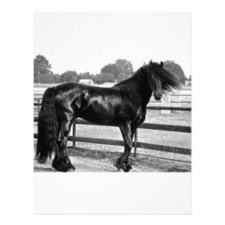 Modelagem do cavalo papéis de carta personalizados
