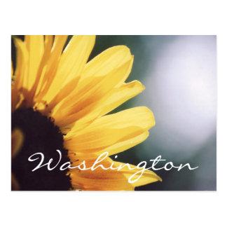 Modelo do girassol do cartão de Washington