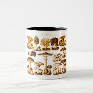 Modelo dos cogumelos da variedade do cogumelo dos caneca de café em dois tons