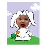 Modelo engraçado da cara da foto do coelho de coel cartão postal