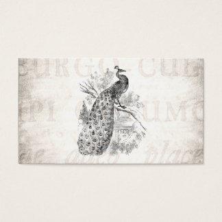 Modelo retro da ilustração do pavão dos 1800s do cartão de visitas