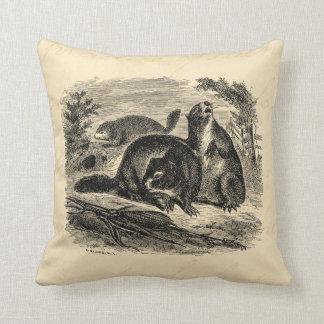 Modelo retro das marmotas da marmota dos 1800s do almofada