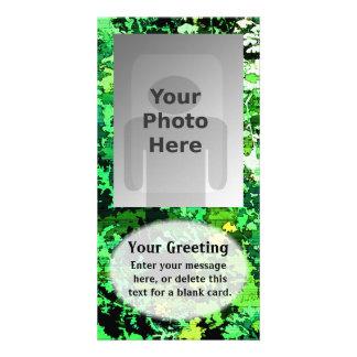 Modelo vertical dos cartões de fotos do teste padr cartões com foto