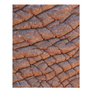 Modelo Wrinkly da textura da pele do elefante Modelo De Panfletos
