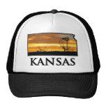 Moinho de vento da fazenda de Kansas Bonés