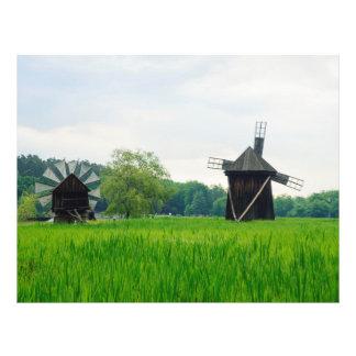 Moinhos de vento, museu Sibiu da vila Modelo De Panfleto
