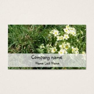 Molde do cartão de assunto pessoal das prímulas