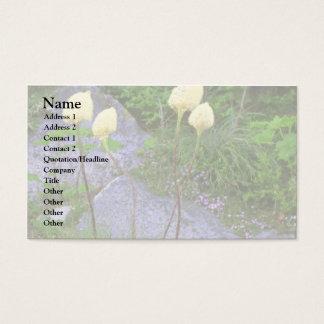 Moldes bonitos cartão de visitas