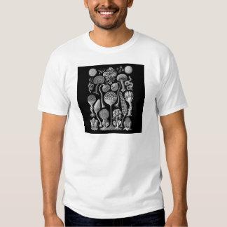 Moldes de limo em preto e branco camisetas