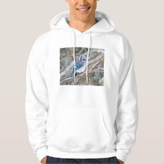 Moletom Jay azul em uma tempestade de neve