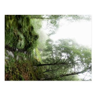Molhe a caminhada na borda de Froggatt Cartão Postal