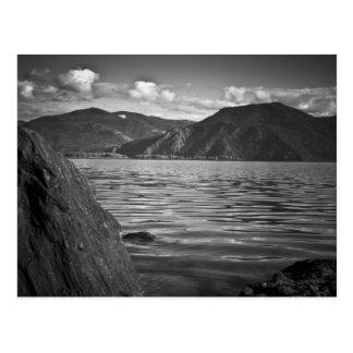 Monarca do verde do ~ do CARTÃO ao longo do lago
