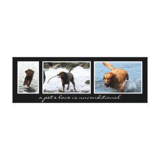 Montagem do animal de estimação para três imagens impressão de canvas esticadas