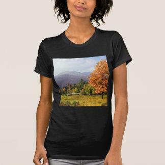 Montagem Mansfield Vermont do outono Tshirt