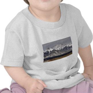 Montagem Princeton Tshirt