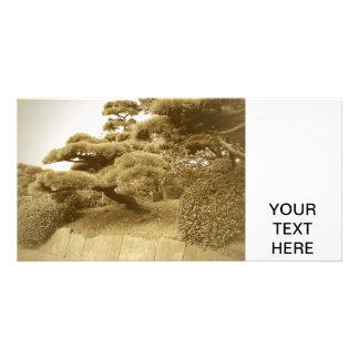 Montanhas em Japão Cartão Com Fotos Personalizado
