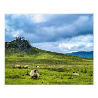 Montanhas escocesas impressão de foto