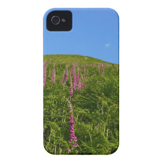 Monte das flores capa para iPhone