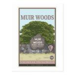 Monumento nacional 2 das madeiras de Muir Cartoes Postais