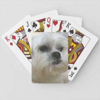 Mookee o cão de Lhasa Apso Baralho