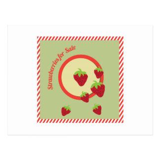 Morangos para a venda cartão postal