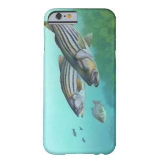 Morone atlântico Saxatilis dos peixes do baixo Capa Barely There Para iPhone 6