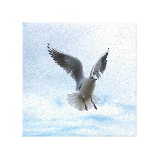mosca do pássaro no céu impressão em tela