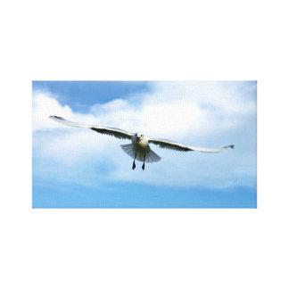 mosca do pássaro no céu no mar impressão em tela