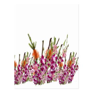 Mostra da flor VERCORDIA Cartão Postal