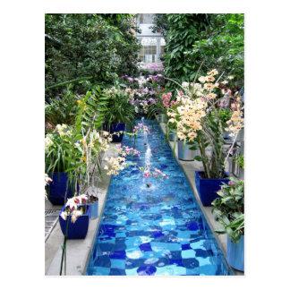 Mostra das orquídeas cartão postal