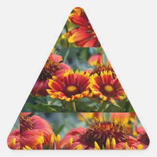 Mostra de flor Palcos diferentes da flor selvagem Adesivos Em Forma De Triângulo