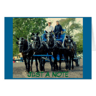 mostra do cavalo de esboço do va do culpeper cartão