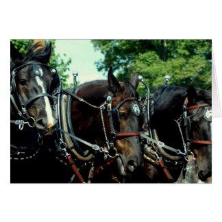 mostra do cavalo de esboço do va do culpeper cartão comemorativo
