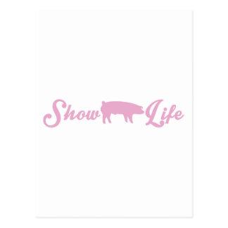 Mostre a vida do porco cartão postal