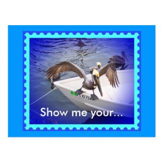 Mostre-me seu duvidoso! cartão postal