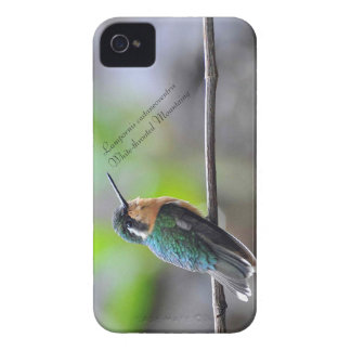 Mountaing Branco-throated Capinha iPhone 4